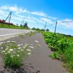 【北海道の道】日本縦断4〜10日目
